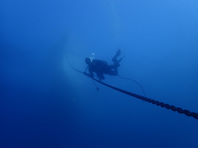 Rottnest Island scuba dive (30m first dive)