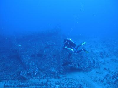 65m  Wreck dive