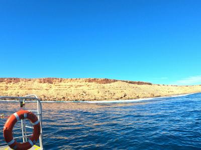 Shark bay dive trip 6 day 6 night